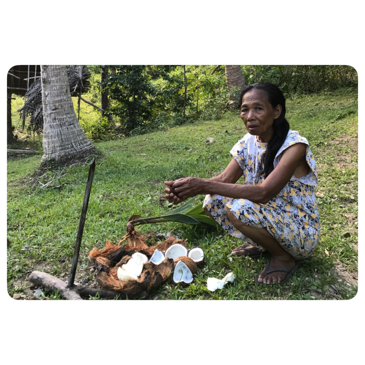 Modesta's Way: Traditional Hair Care Methods Using The Mighty Coconut